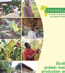 Quality protein maize production and post-harvest handling handbook for East and Central Africa