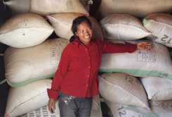 How climate smart rice innovations are changing livelihoods in Madagascar