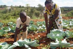 Adaptation works—Kenyan women tell Climate change conference